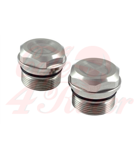 BMW Fork Nuts for 36mm Forks for Rebelmoto BMW Triple Tree Clamp or any other aftermarket triple tree 2pcs