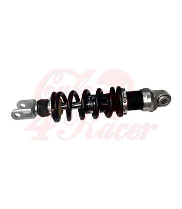 BMW K75/100/1100/1 Suspension platform SdeWinder Meccanica CNC