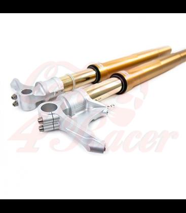 Ohlins  Front suspension R9T gold (2014-2016)