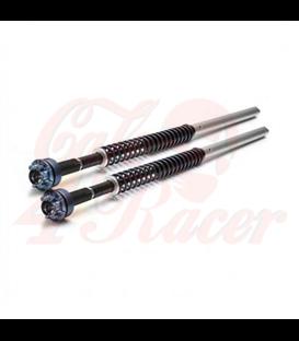Fork Cartridges pre  R9T Pure, Racer
