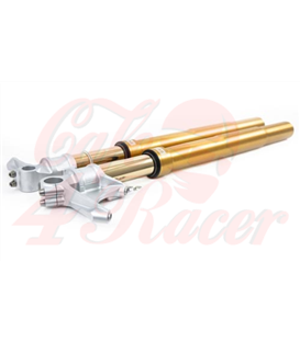 Ohlins  Front suspension R9T gold