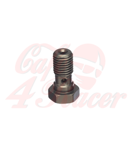 ABM banjo hollow screw Alu M10 x 1,0, titan