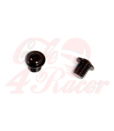 Mirror replacement Ergal Screw Kit  for  BMW R9T Scrambler / Pure / Racer / Urban GS